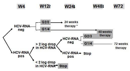 Quy trình điều trị viêm gan C (theo Soriano 2007)